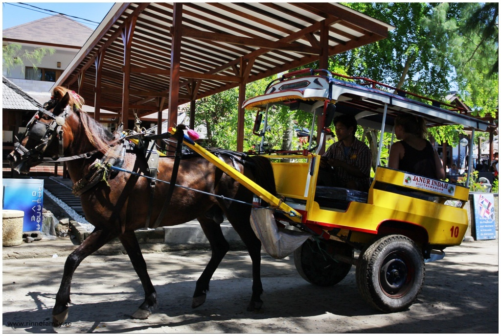 Horse carriage at Gili Trawangan